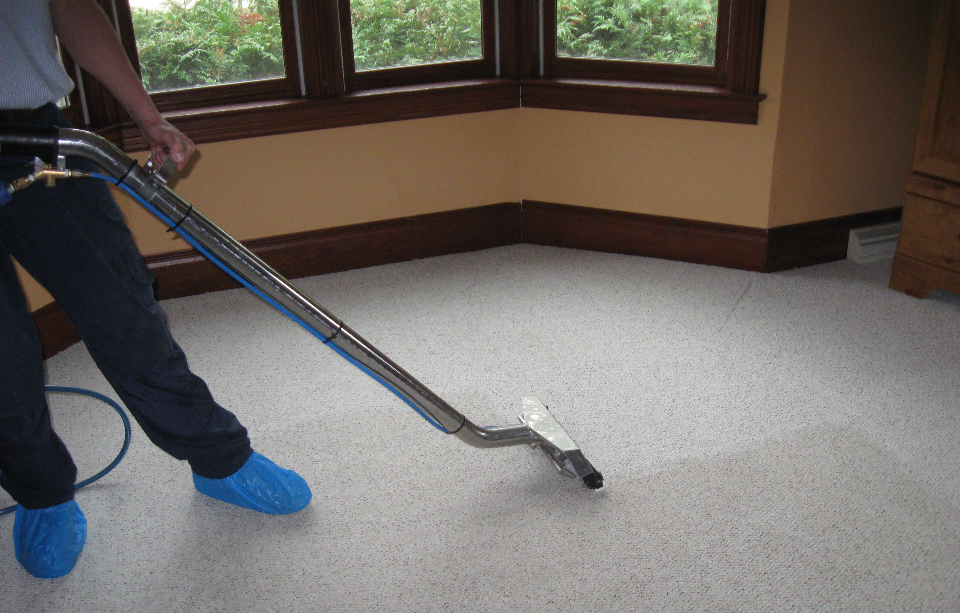The Office Cleaners - Commercial Carpet Cleaning - Cleaning Image