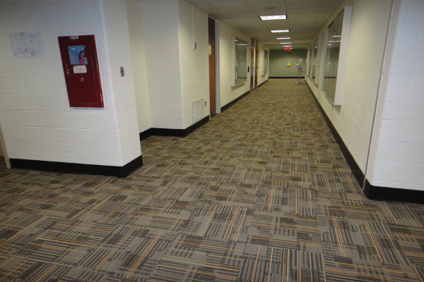 The Office Cleaners - Commercial Carpet Cleaning - Property Managers Image